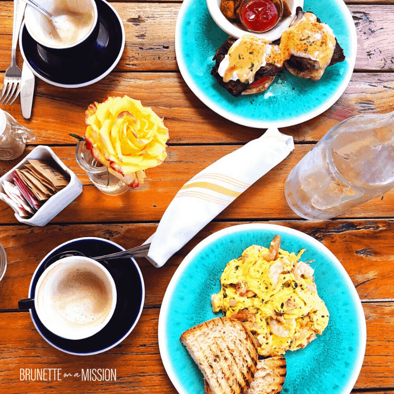 Guide to IF for Beginners - Beautifully plated and vibrant breakfast of omelette and toast, eggs Benedict, two cups of cappuccino, silverware and a yellow rose on a wooden table over top.