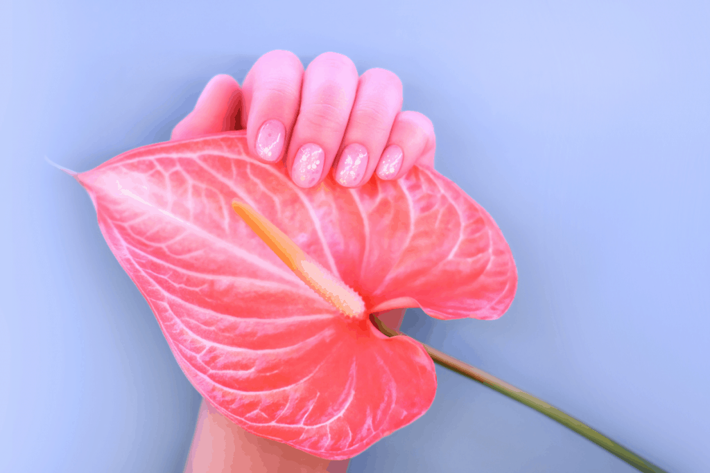 Shot of a hand with a beautiful abstract pink manicure holding a pink calla lily flower against a blueish background | What are Fiberglass Nails and How to Apply Them? | Brunette on a Mission
